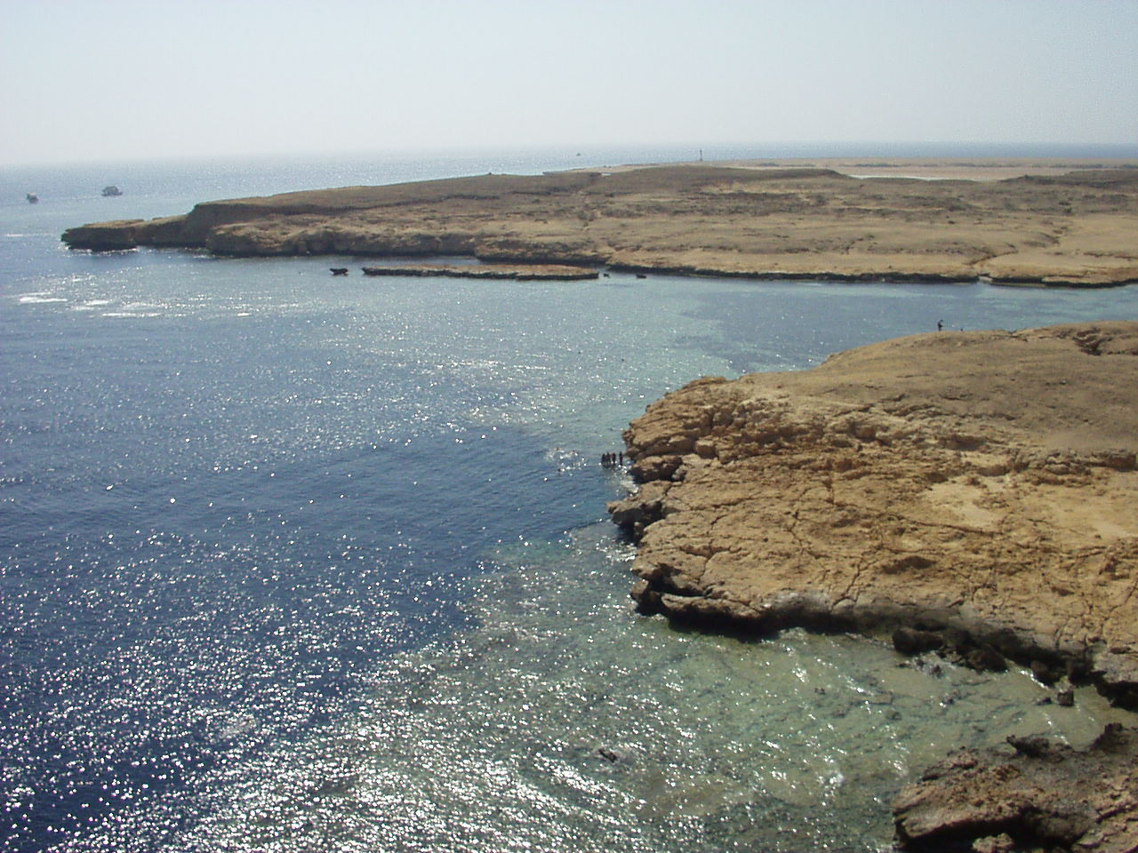 محميات مصر الطبيعية ...كنوز يجب معرفتها للمحافظة عليها Coral_reef_in_Ras_Muhammad_nature_park
