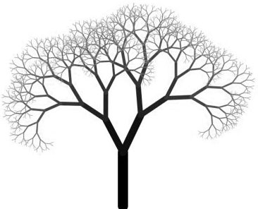 فراكتلية الشجرة