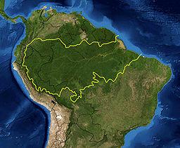 خريطة المناطق البيئية لغابات الأمازون المطيرة كما حددها صندوق العالمي للطبيعة. ويغلف الخط الأصفر تقريباً غابات الأمازون المطيرة (بالرغم من أنه يترك ڤنزويلا والگويانات). وتظهر الحدود الدولية باللون الأسود. صورة ساتلية من ناسا.