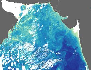 البحر العربي 300px-ArabianSea_AMO_2005053_crop
