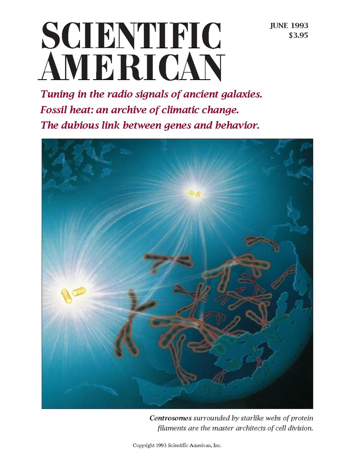 Scientific American - 1993.06 - Tuning in the Radio Signals of Ancient Galaxies.pdf