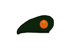 Thunderbolt General Beret - Egyptian Army.png