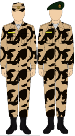 Egyptian Army Thunderbolt camouflage uniform