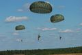 US Army 52231 'Airborne' in five languages 6.jpg