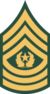 USAr.insignia.e9comm.wag22.png