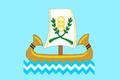 العلم الرسمي لمدينة محافظة كفر الشيخ