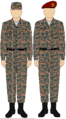 Egyptian Airborne camo uniform.png