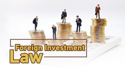 Foreign investment law ads.jpg
