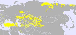 اللغات التوركية