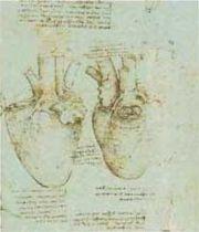 180px-Hearthistorypic1.jpg