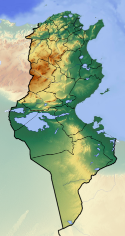 تونس is located in تونس